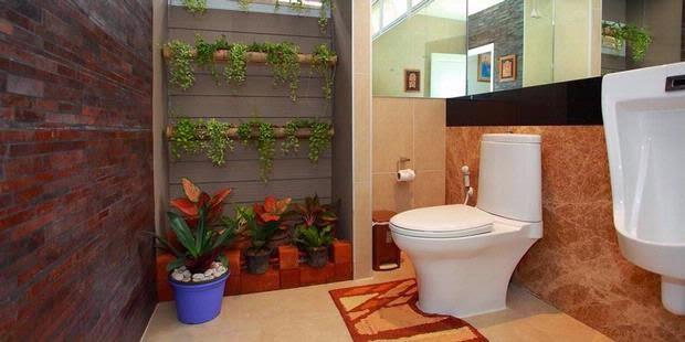 tanaman-hias-dalam-rumah-3